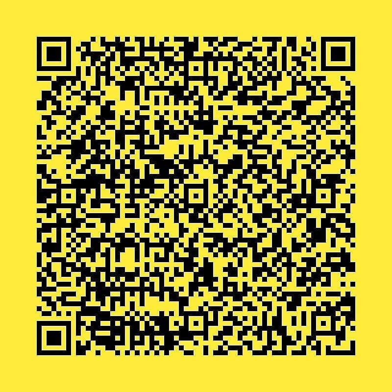 Ремонт  шкода +79067338004
